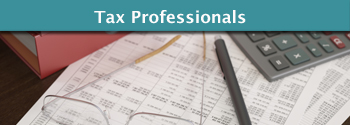 Tax Professionals